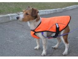 Накидка (попона) для собак мала (1025) оранжева
