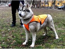Накидка (попона) для собак большая (1026) оранжевая
